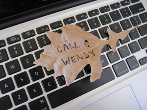 call-wendy