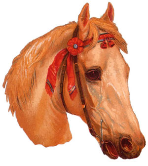 horse-head2