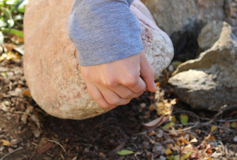 looking under a rock
