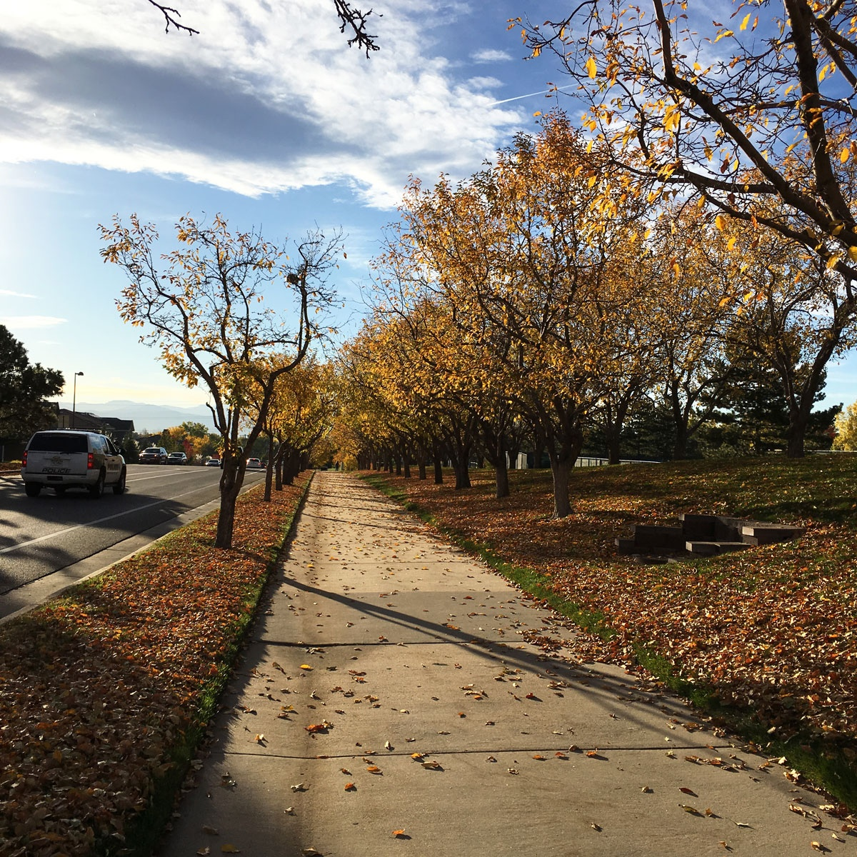 sidewalk in the autumn, greenwood village, colorado